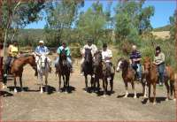 Riding horses with the wife and friends in South African vineyards (2009)